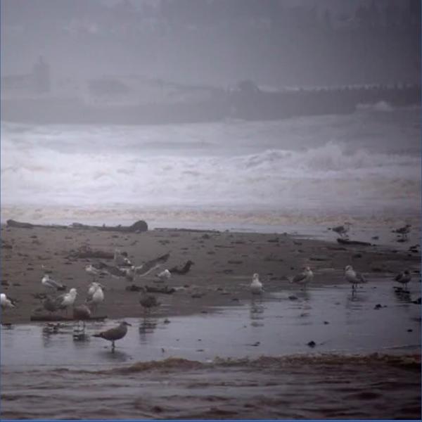 Музыка от Water Soundscapes в формате mp3