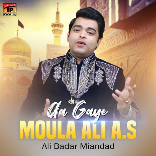Ali Badar Miandad - Aa Gaye Moula Ali A S  (2020)