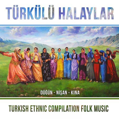 Mehmet Delikaya, Serdar Erbaşı - Oy Fakiro  (2019)