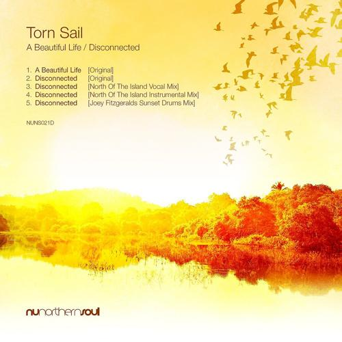 Torn Sail - A Beautiful Life (Original Mix)  (2020)