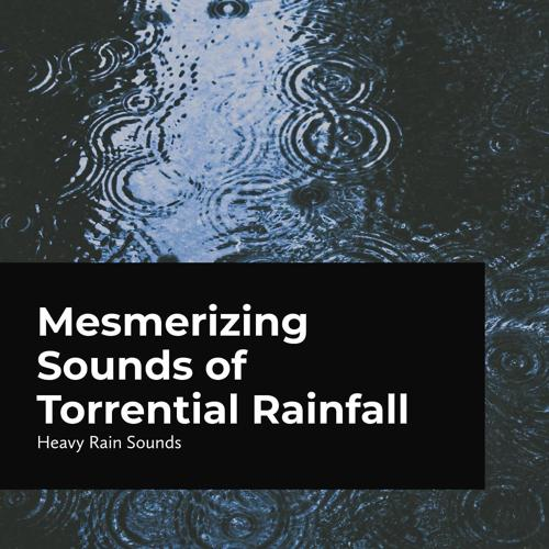 Heavy Rain Sounds - The Wind Blows as the Rain Pours  (2020)