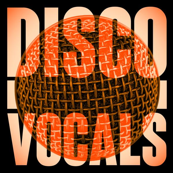 Альбом: Disco Vocals: Soulful Dancefloor Cuts Featuring 23 Of The Best Grooves
