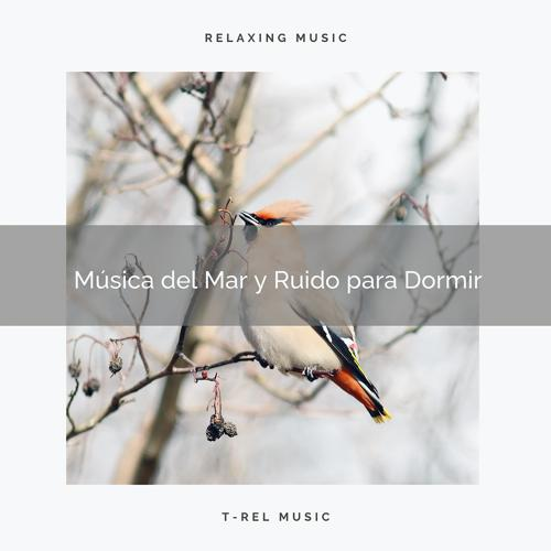 Ruido Blanco & Ruído De Colores Para Bebes - Música del Bosque y Ruido de Colores para Relajar  (2020)