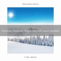 Sound Sleeping - Christmas in the Woods is Magical with Classic Tunes