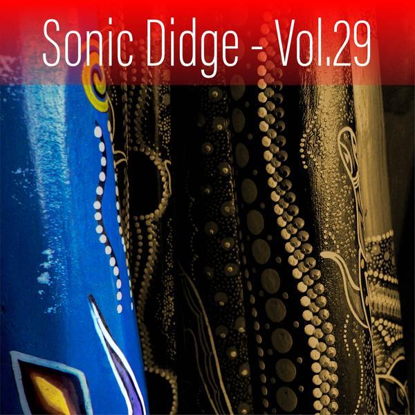 Альбом: Sonic Didge, Vol. 29