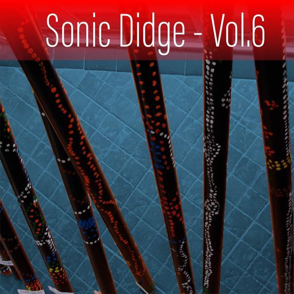 Альбом: Sonic Didge, Vol. 6