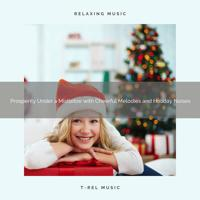 XMAS Moods 2020 - Happy Holidays and Joy with Calming Christmas Noises
