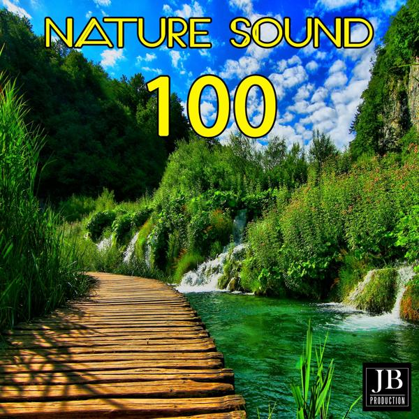 Альбом: 100 Nature Sound