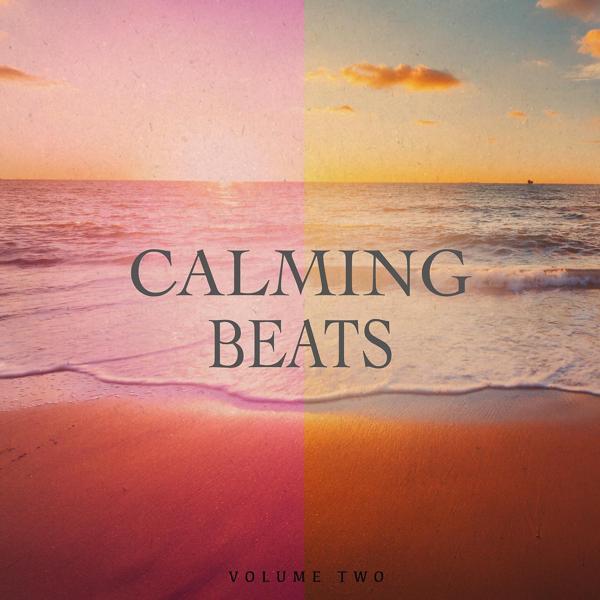 Альбом: Calming Beats, Vol. 2