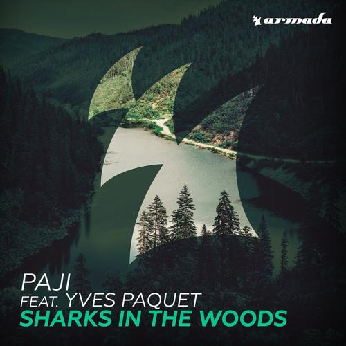 PAJI, Yves Paquet - Sharks In The Woods (feat.Yves Paquet)  (2016)