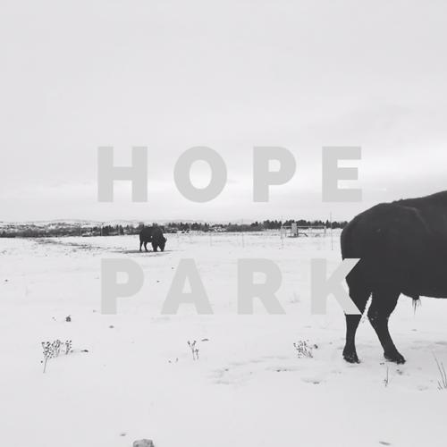 Hope Park - You'll Never Love Again  (2018)